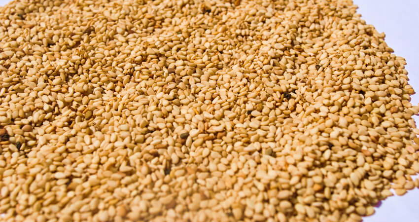 Sudanese Sesame Seeds - Bayrony Investment International Co.Ltd